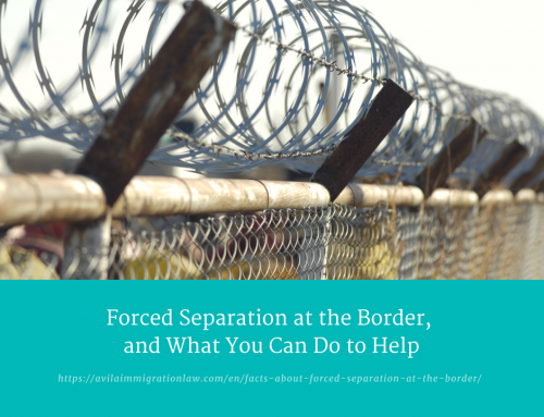Facts about Forced Separation at the Border (and how you can help!)